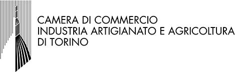 Logo Camera Torino
